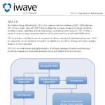 Features Sheet (excerpt), iWave Software
